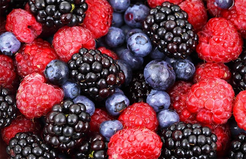 leśne owoce