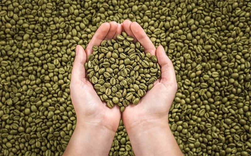 Właściwości surowej kawy