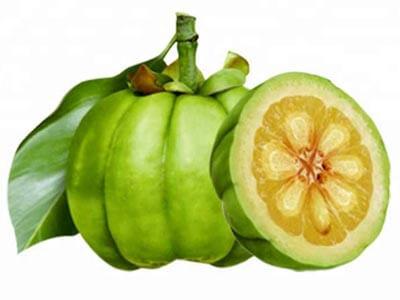 owoce garcinia cambogia na białym tle